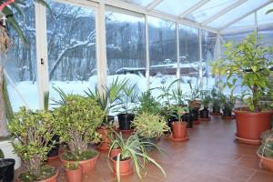 kasvuhoone soojapidavus ja soojustamine