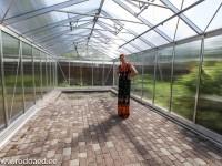tühi kasvuhoone