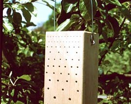 puidust putukate hotell_370_01