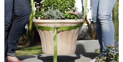 taimede kanderihm_1